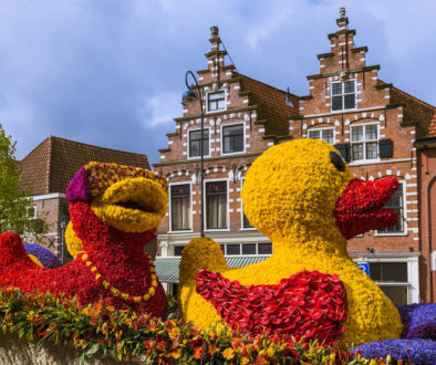 Statue made of tulips on flowers parade in Haarlem Netherlands -